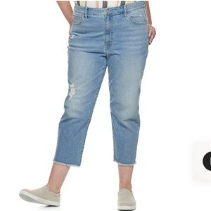 Plus Size EVRI High Waisted Distressed Ankle Jeans